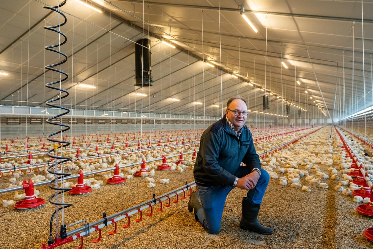 Vleeskuikenhouders Van Dijk-Nooijen gaan volop voor Powerline isolatieplaten in hun nieuwe stallen